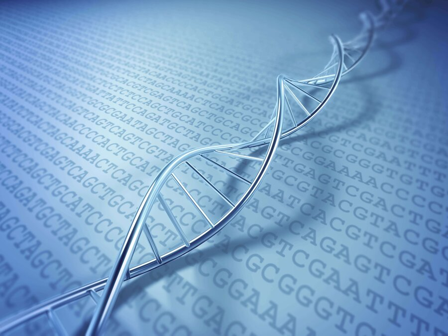 Putting the body back in biology 137 cosmos and culture npr a rendering of a strand of dna sciox Choice Image