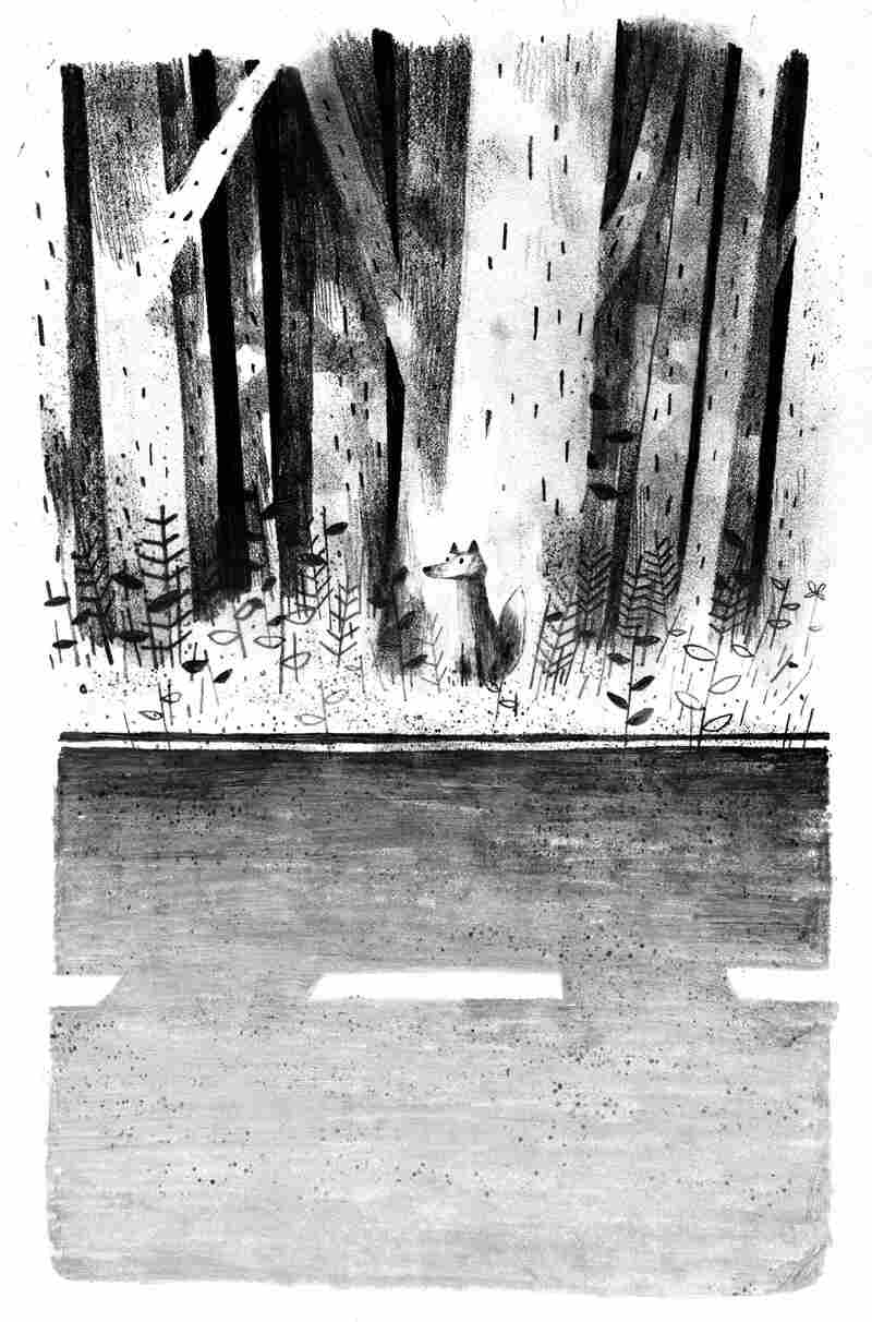 At the outset of Pax, a young fox that has never lived in the wild is left alone in the woods.