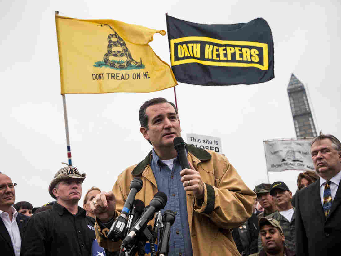 Ted Cruz, pictured here at a 2013 rally in Washington, D.C., enjoys support from the Tea Party, one of the strongest anti-establishment forces in the past few years.
