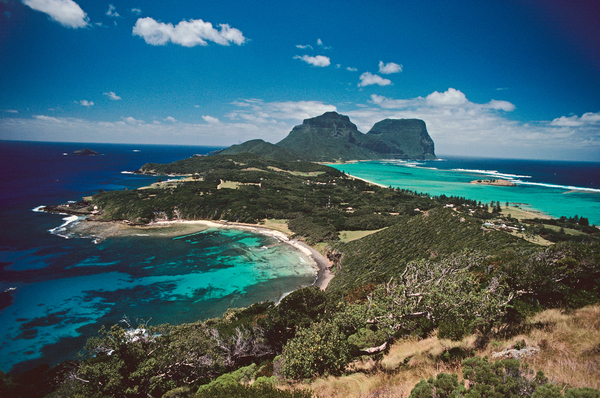Lord Howe Island, in the South Pacific, is once again home to some of its namesake insects — but only in captivity so far.