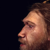 A reconstruction of a Neanderthal man (right) based on skull found at the La Ferrassie rock shelter in Dordogne Valley, France. He's face to face with a male Homo sapien.