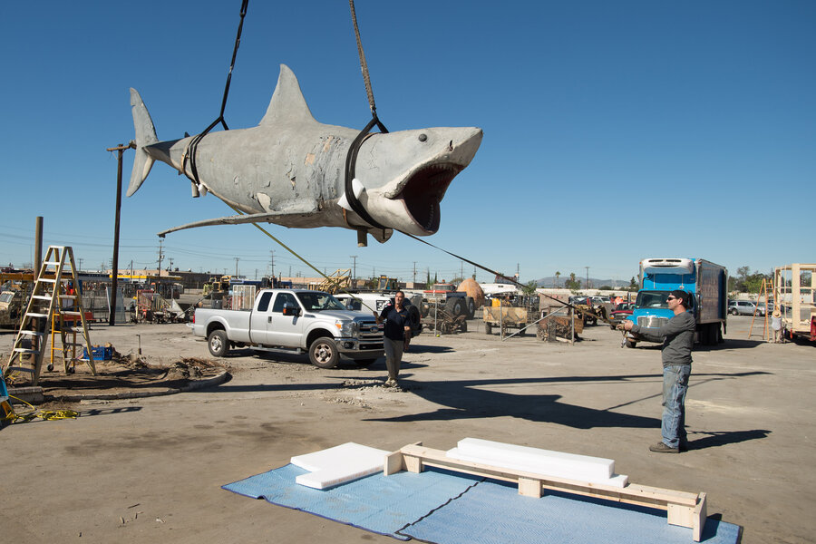 From Junkyard To Museum: The Journey Of A \'Jaws\' Shark : NPR