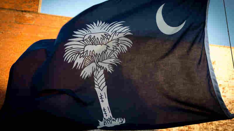 The South Carolina state flag.