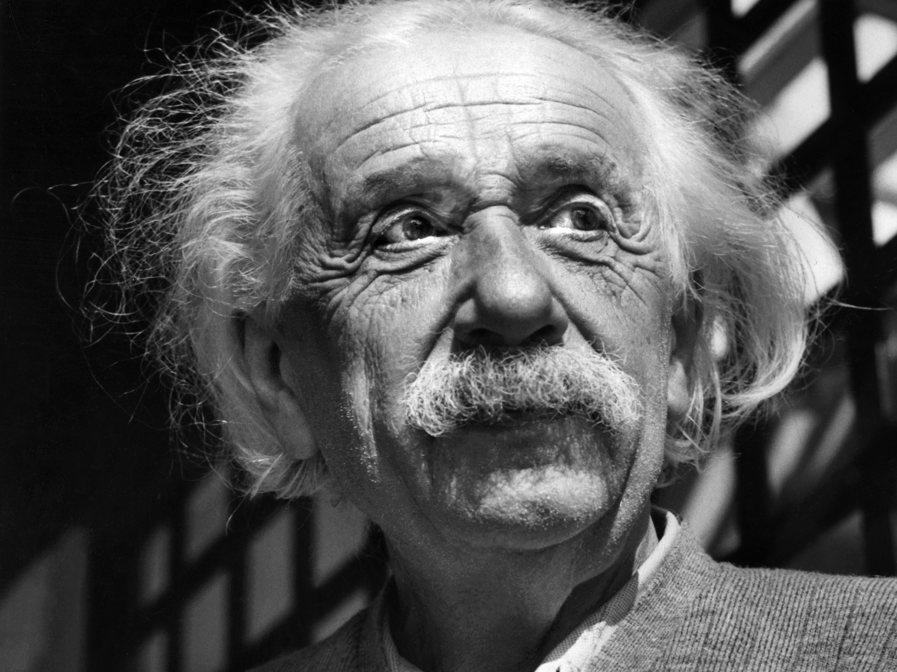 Einstein Saw Space Move, Long Before We Could Hear It