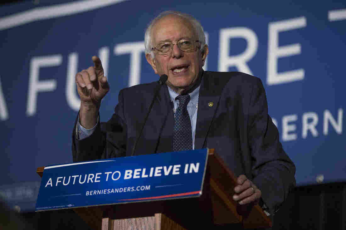 Democratic presidential candidate Bernie Sanders speaks during a town hall at the University of South Carolina. Sanders promotes the idea of free college education for all.