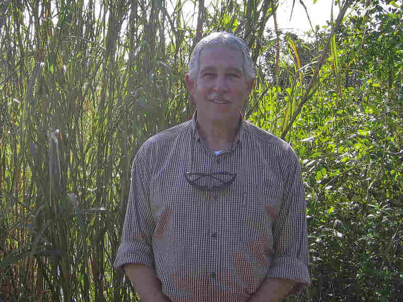 Hydrologist Bob Johnson has worked on Everglades restoration for more than three decades.