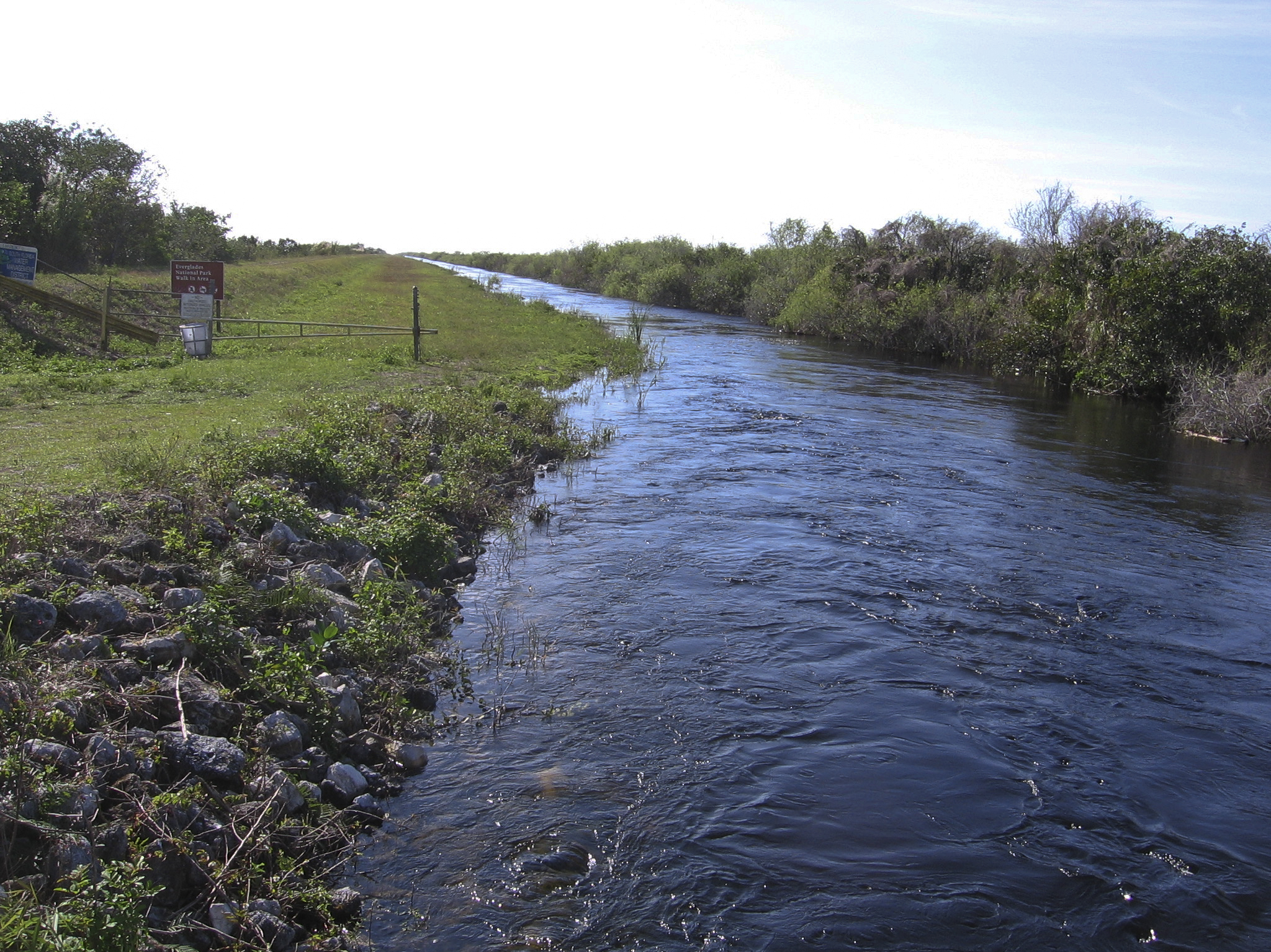 Once Parched, Florida's Everglades Finds Its Flow Again