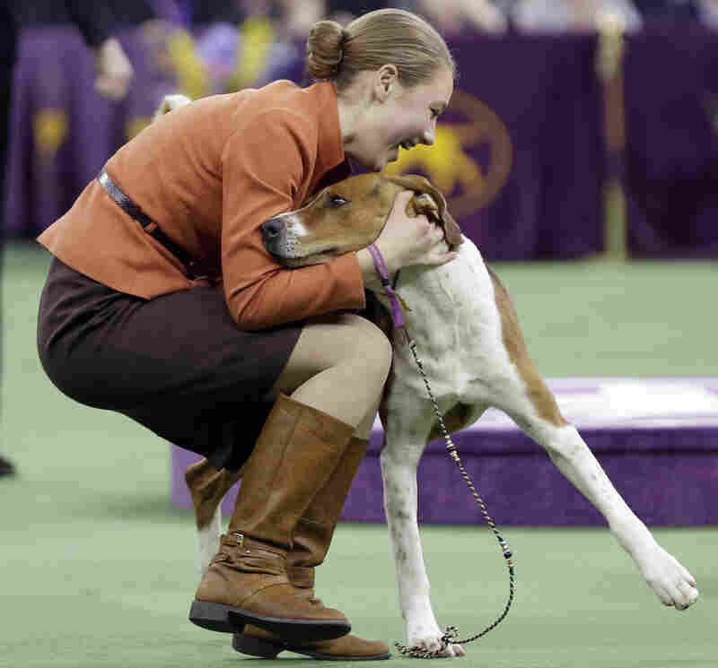 Sophia Rogers celebrates with Kiarry's Back in the Saddle, an American foxhound, after winning the junior showmanship competition during the Westminster dog show.