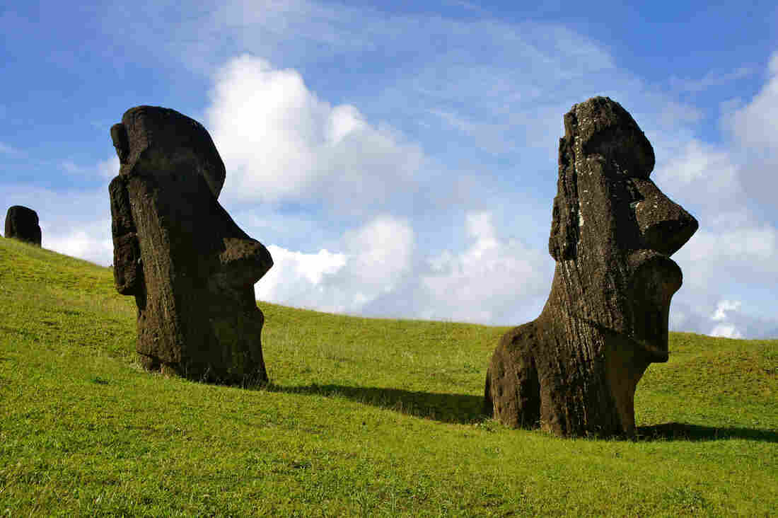 Although warfare has long been posited as a likely cause of Easter Island's collapse, there is no evidence of defensive structures on the island, some archaeologists say. And the sharp obsidian objects long assumed to be spear points may in fact have been used for farming.