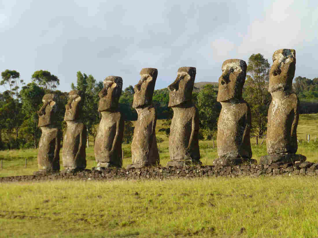 Easter Island is known best for its hundreds of colossal stone statues depicting human figures. The causes of its societal and economic collapse centuries ago are fiercely debated among scientists.
