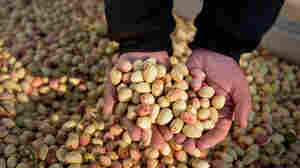 Oh, Nuts! U.S. Pistachio Growers Worry About Competition From Iran
