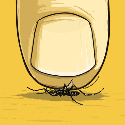 Would It Be A Bad Thing to Wipe Out A Species ... If It's A Mosquito?