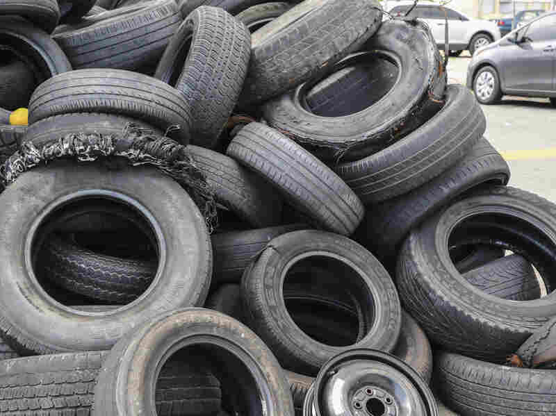 Previous experience with dengue outbreaks in Puerto Rico has shown that even small amounts of standing water, like in piles of tires seen here, can serve as breeding areas for the mosquitoes that carry dengue and Zika.