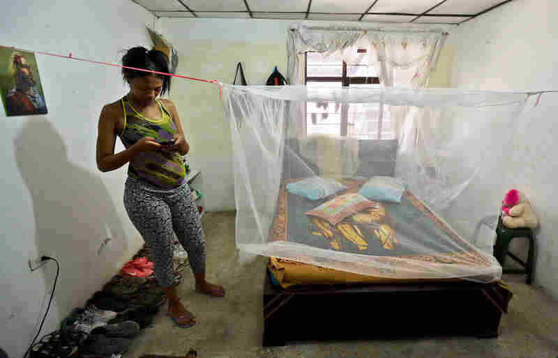 Seven months pregnant Maribel Gomez stands next to a mosquito net placed over her bed on February 17, 2016, in Cali, Colombia. Cali's Health Secretariat massively delivered mosquito nets to pregnant women and installed guppy fish bowls as a preventive measure against Aedes aegypti mosquito, vector of Zika, Dengue, and Chikungunya.