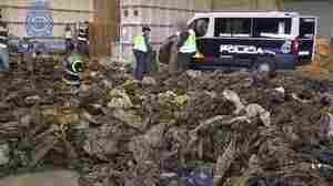 Thousands Of  ISIS-Bound Uniforms Seized, Spanish Police Say
