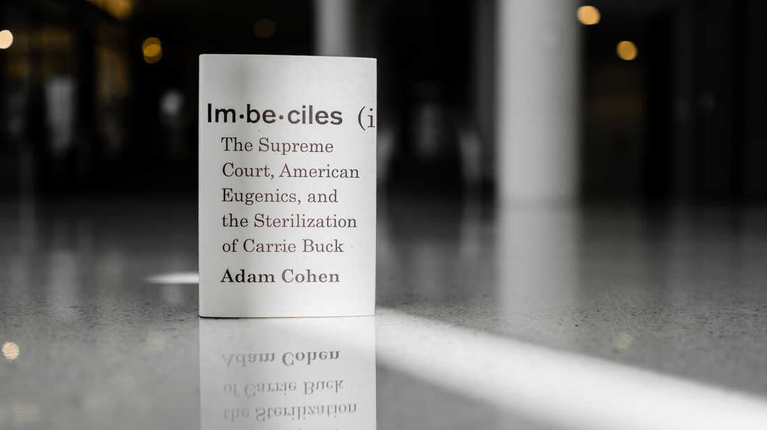 Cover image of Imbeciles, by Adam Cohen.