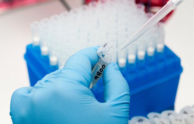 How Best To Test For Zika Virus? : Shots - Health News : NPR