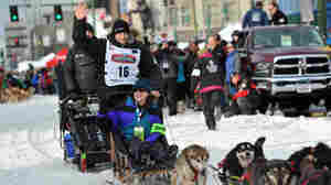 Dallas Seavey Wins Fourth Iditarod Championship In Five Years