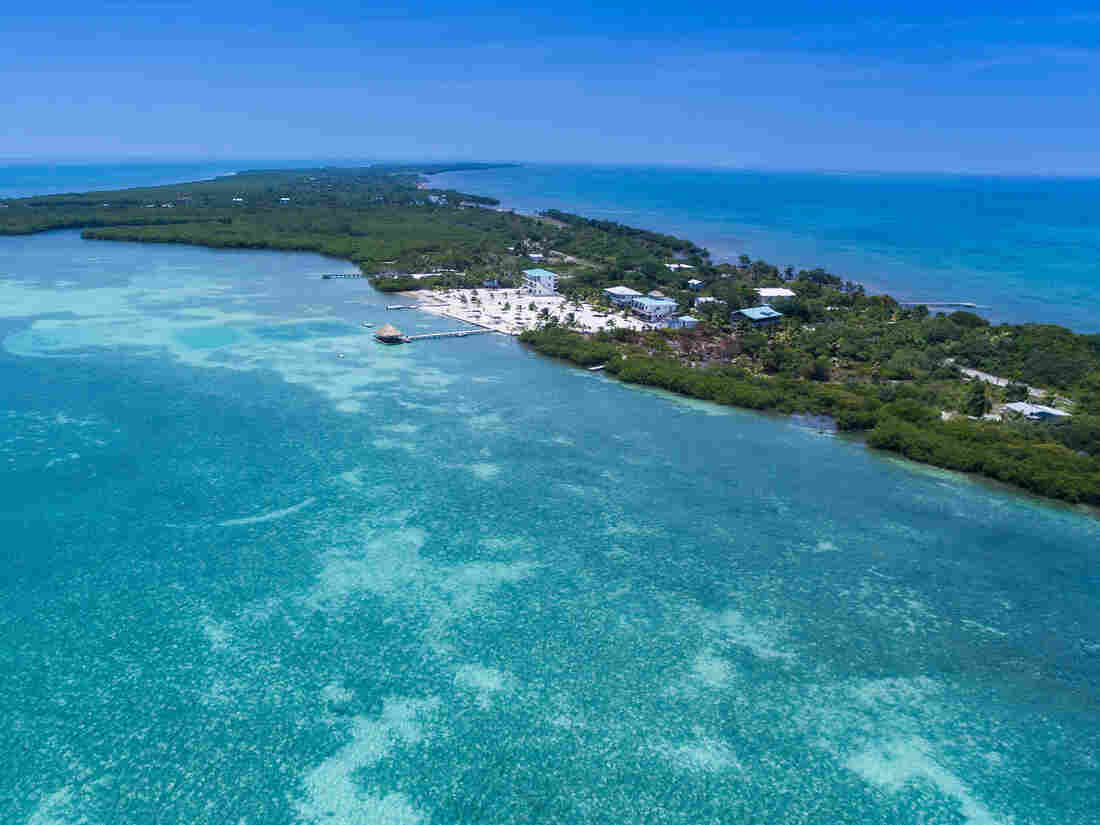 "An aerial view of Caye Caulker, Belize. Belize was the home of one of Planet Money's offshore shell companies, ""Unbelizeable Inc."""