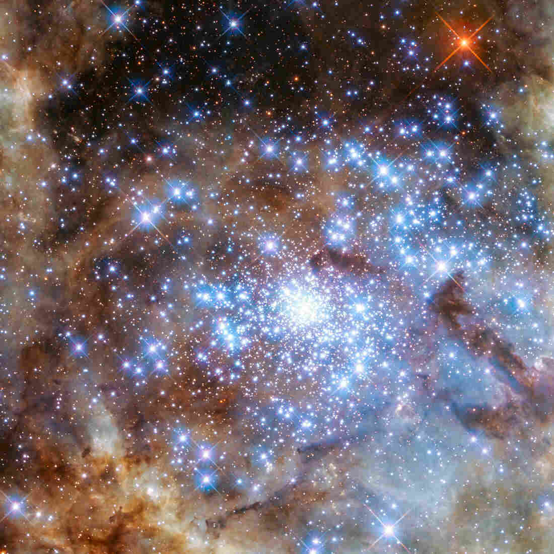 Hubble Space Telescope Pinpoints 'Monster' Stars