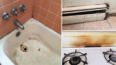 Terrell Walker says that her apartment in Washington, D.C., has mold and problems with heating and old appliances. She's been withholding rent in an effort to get her landlord to fix up the apartment.