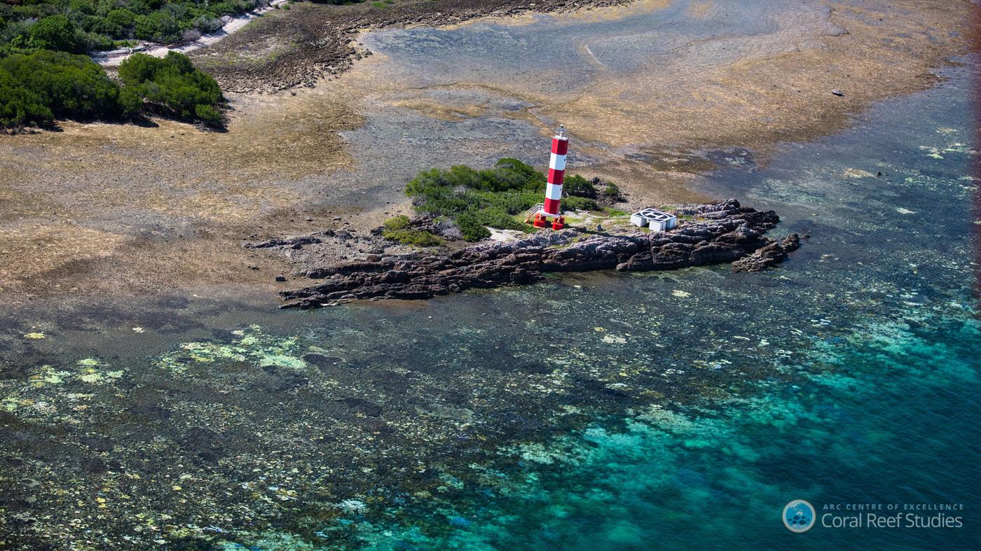 massive u0027bleaching u0027 affects great barrier reef the two way npr