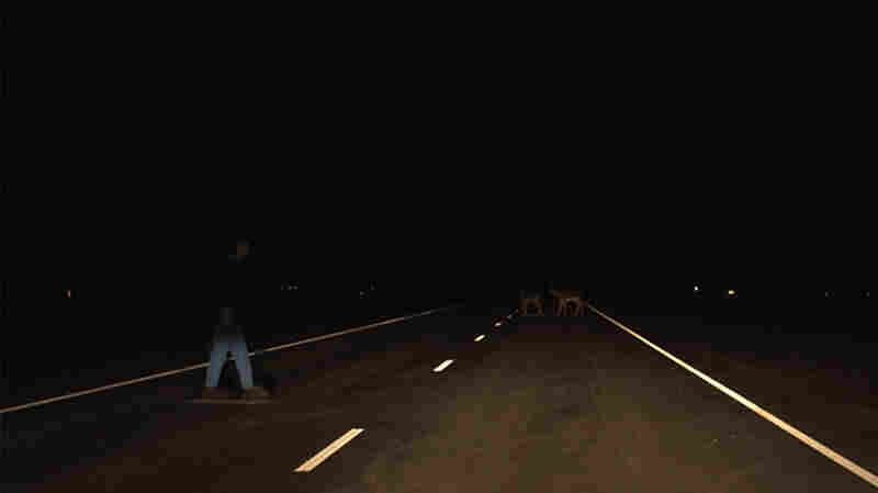 """Do you see the deer? A Honda Accord four-door with halogen lights (left) was found to have """"acceptable"""" lights, while the Mercedes-Benz C-Class, also with halogen, was given a """"poor"""" rating, based in part on how well each car lit objects on a straight section of road."""