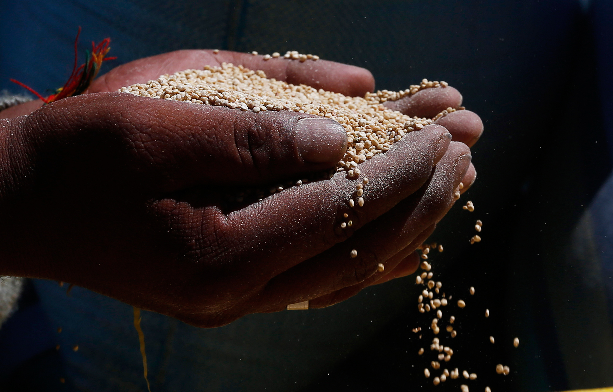 Your Quinoa Habit Really Did Help Peru's Poor. But There's Trouble Ahead