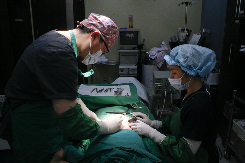 How S  Korea's Plastic Surgeons Are Helping Scarred N
