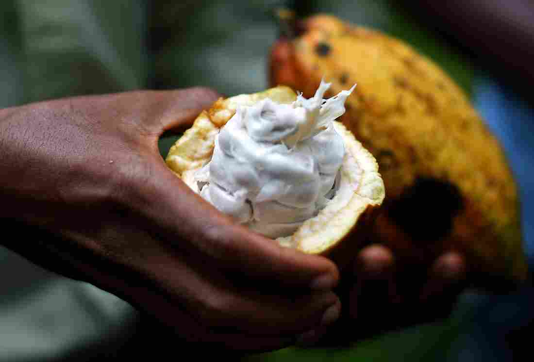 If Carl Manlan had $2 billion, he'd invest in building a cocoa plant in Ghana to create jobs.