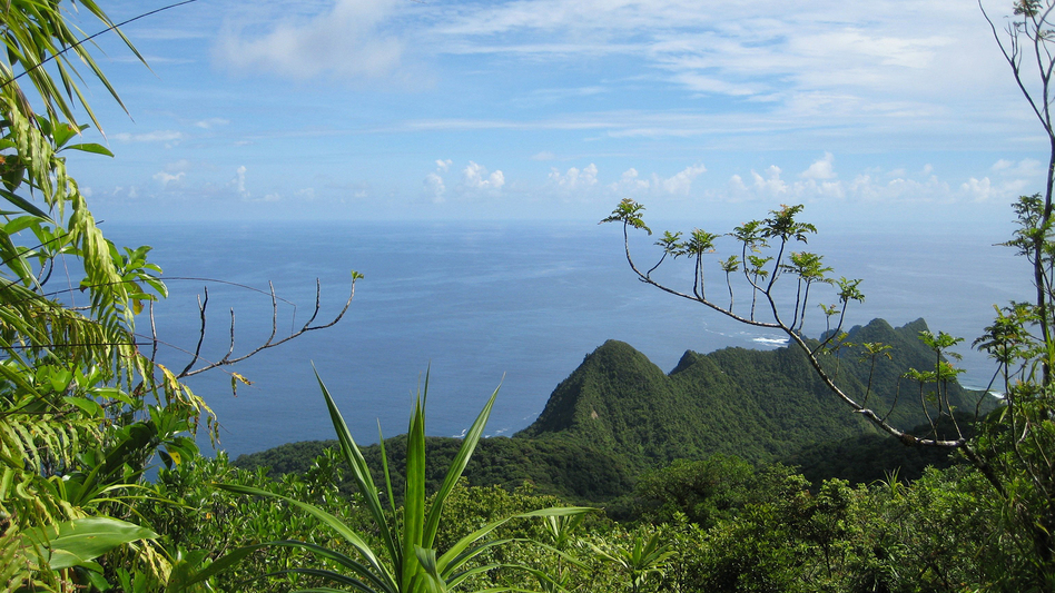 A view of the lush Samoan vegetation in American Samoa, Tutuila Island. (LCDR Eric Johnson/National Oceanic and Atmospheric Administration)