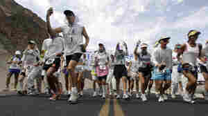 The researchers were inspired by working with ultramarathoners, who can be sidelined by blisters despite years of training. These runners competed in the 2007 Badwater Ultramarathon in Death Valley, Calif.