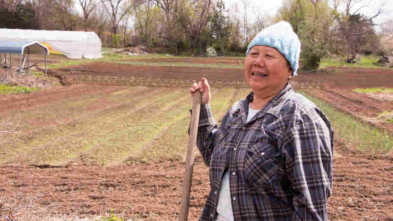 Beh paw Gaw is a New Roots graduate and a Karen refugee from Myanmar. Now she has her own three acre farm which she runs with her sister Pay lay, who is also a graduate of the New Roots program.