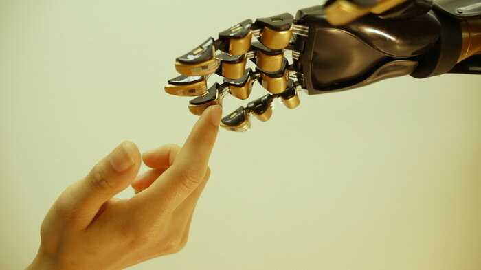 human and artificial hand