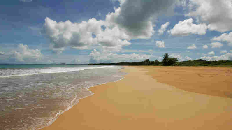 """A view of the beach known as """"La Selva,"""" part of the Northeast Ecological Corridor reserve, in Luquillo, Puerto Rico."""