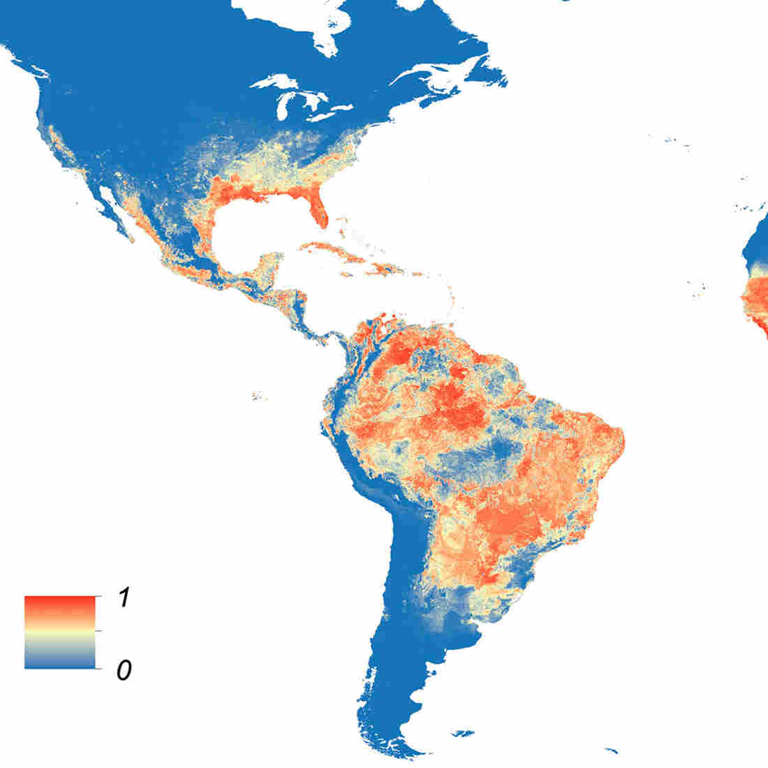 This map shows the predicted distribution of Aedis aegypti, the mosquito that carries Zika virus. The redder the area, the higher the probability.