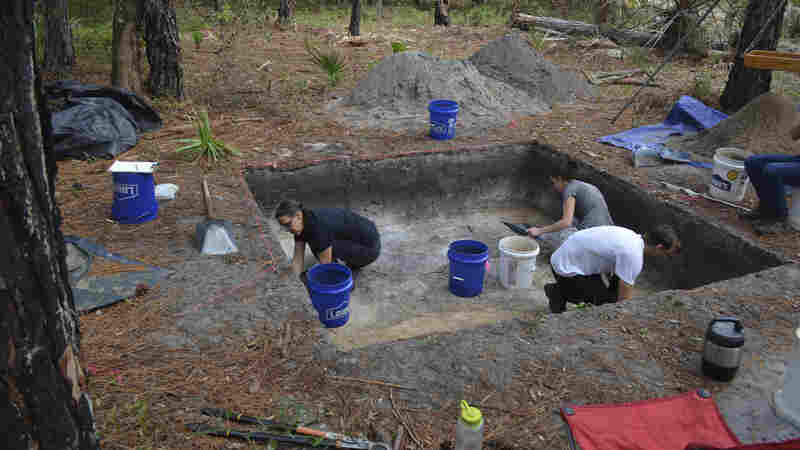 """Rachelle Ianelli (left) and Austin Jacobs (middle) both archaeological students from University of Florida, together with Florida Public Archaeology Network representative Rachael Kangas, excavate a section at """"Garden Patch,"""" a settlement populated after rising seas forced people to leave Bird Island."""