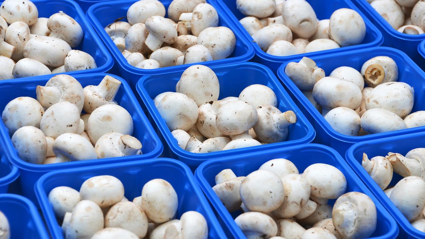 food blog pictures lndfg pchh