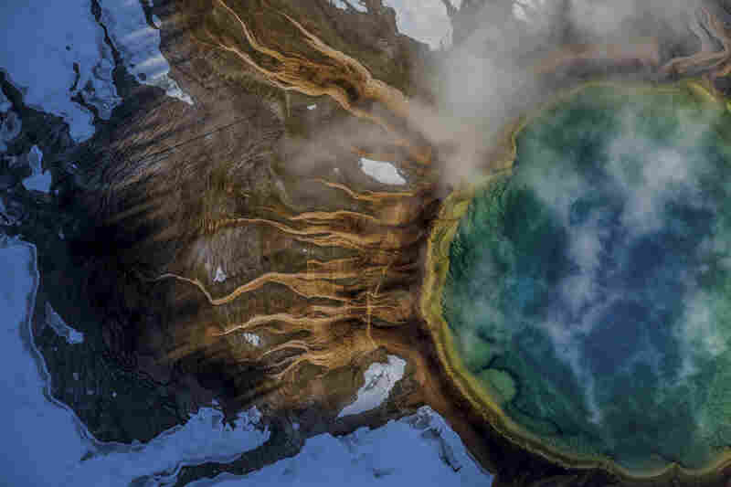 The colors of Yellowstone's Grand Prismatic Spring come from microbes called thermophiles, which thrive in scalding water. The green is chlorophyll the thermophiles use to absorb sunlight.