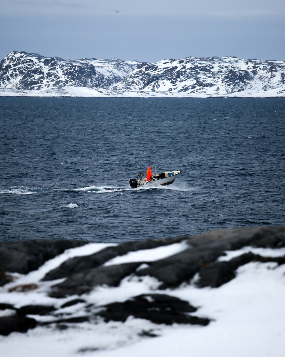 A hunter heads into the fiord that surrounds Nuuk.