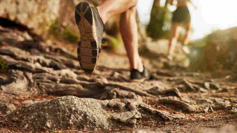 """A study released last fall suggests it may not be endorphins that cause a """"runner's high."""""""