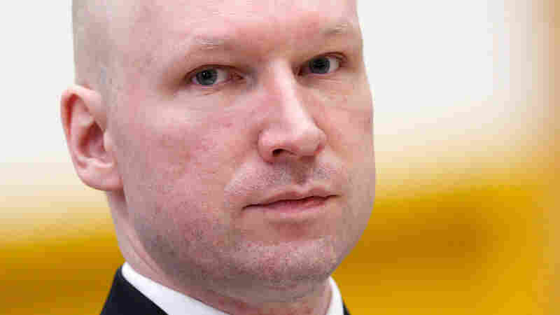 Norwegian mass killer Anders Behring Breivik in court in March at Skien prison.