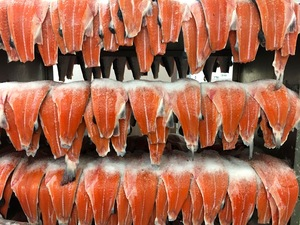 Fillets of salmon, salted and smoked by H. Forman & Son, are destined for the U.S. grocery chain Whole Foods.