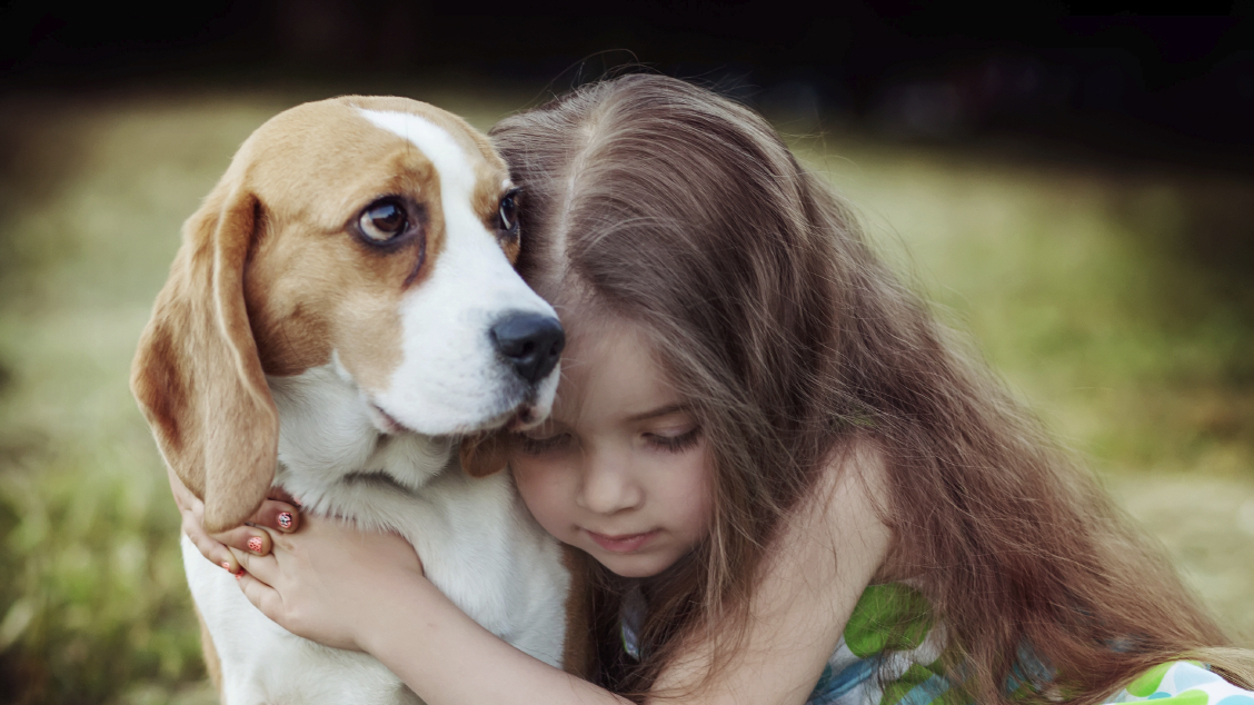 Let's Not Hug It Out With Our Dogs