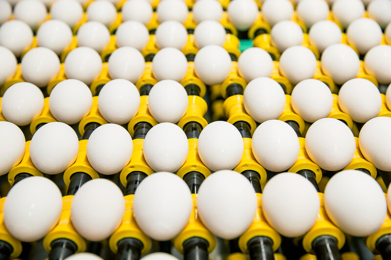 The American Egg Board brought you this photo, but does that mean it came from private industry or the government?