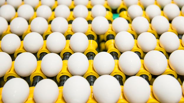 The American Egg Board brought you this photo, but does that mean it came from private industry or the government? (Courtesy of The American Egg Board)