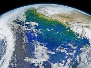 This Feb. 8, 2016 composite image reveals the complex distribution of phytoplankton in one of Earth's eastern boundary upwelling systems — the California Current.