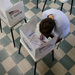 Election Commission Advisory Board Clashes With Director Over Citizenship Rule
