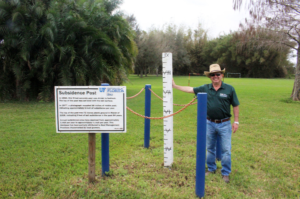 Leonard Scinto, a researcher at Florida International University, standing beside a concrete post that measures the subsidence of soil in the Everglades Agricultural Area. In 1924, the top of the post was level with the ground surface.