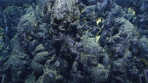 Pillow lava in the Mariana Trench from an eruption that is less than three years old.